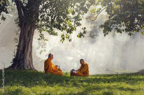 Fotografie, Tablou Two monks meditation under the trees with sun ray, Buddha religi