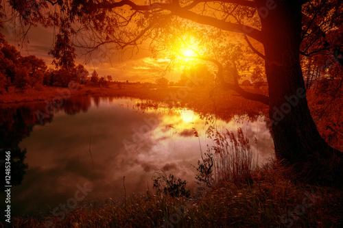 Poster Cerf Rural landscape with lake at magical orange sunset
