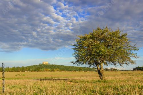 Apulia landscape: Alta Murgia National Park Wallpaper Mural