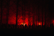 Crowd Of Hungry Zombies In The Woods. Silhouettes Of Scary Zombies Walking In The Forest At Night. Red Alert