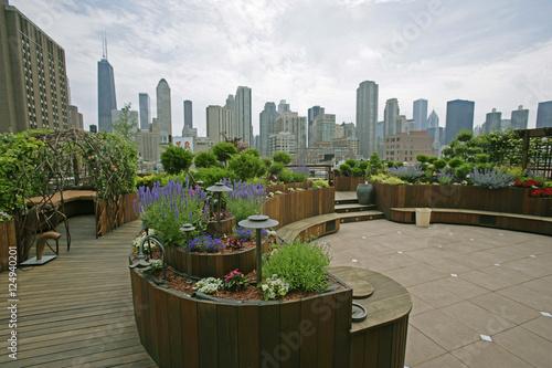 Fotografie, Obraz  rooftop garden cityscape