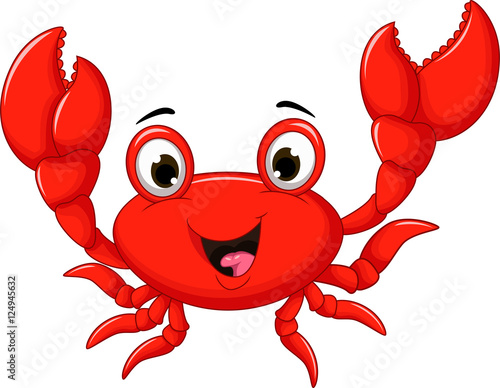 Photo funny cartoon crab for you design