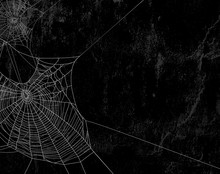 Spider Web Against Black Shabb...