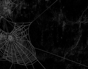 Fototapeta spider web against black shabby wall background