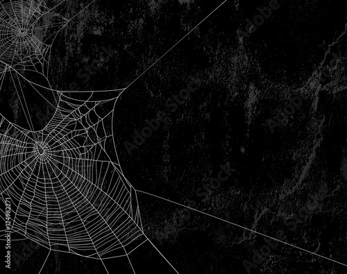 Fotografiet spider web against black shabby wall background