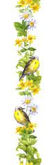 Fototapeta Do herbaciarni Bird, meadow flowers, herbs. Spring watercolor. Seamless border strip