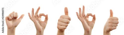 Fotografie, Obraz  Hände mit zustimmender Geste