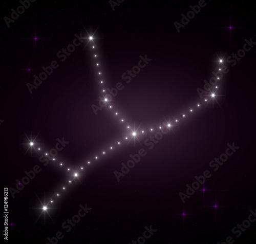 Virgo Zodiac Sign Horoscope Constellations Background