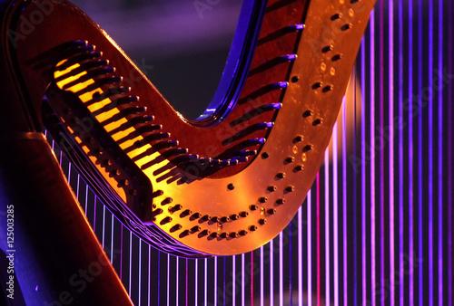 Konzertharfe Tapéta, Fotótapéta