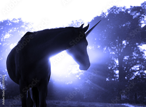 Cuadros en Lienzo Image of a magical unicorn against hazy sunrise with sun rays in blue tone