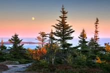 Cadillac Mountain At Acadia Na...