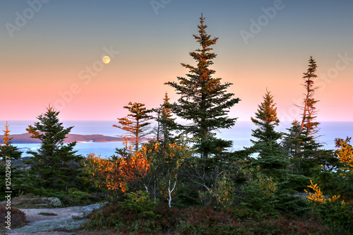 Cadillac Mountain at Acadia National Park in Maine Canvas Print