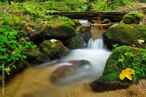 Foto auf Gartenposter Forest river Autumn flowing mountain stream waterfall in Slovakia. Colored leafs on moss rock. Fresh natural water.