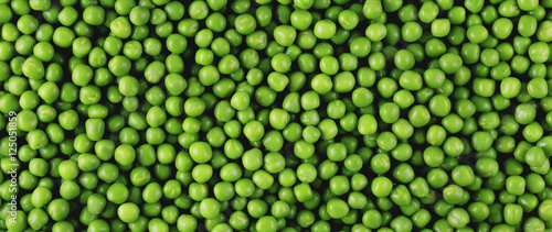 Green peas panorama Canvas Print