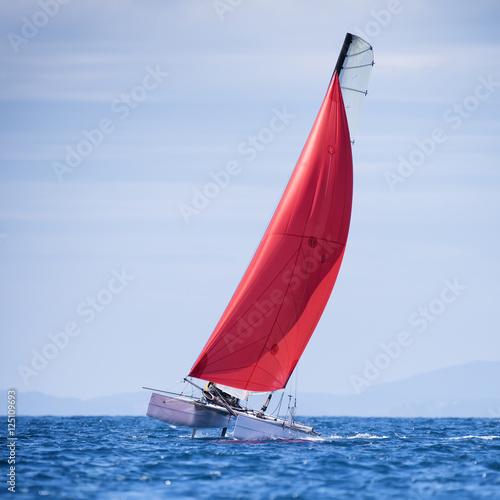Fotografie, Obraz  sail boat