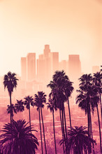 Los Angeles Skyline With Palm ...