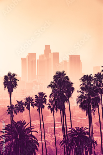 widok-na-skyline-los-angeles-z-palmami
