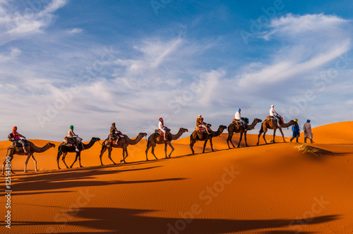 Poster Kameel Karawane in den Dünen der Sahara bei Merzouga (Erg Chebbi); Marokko
