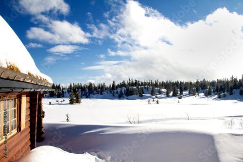 Fototapety, obrazy: Winterhütte