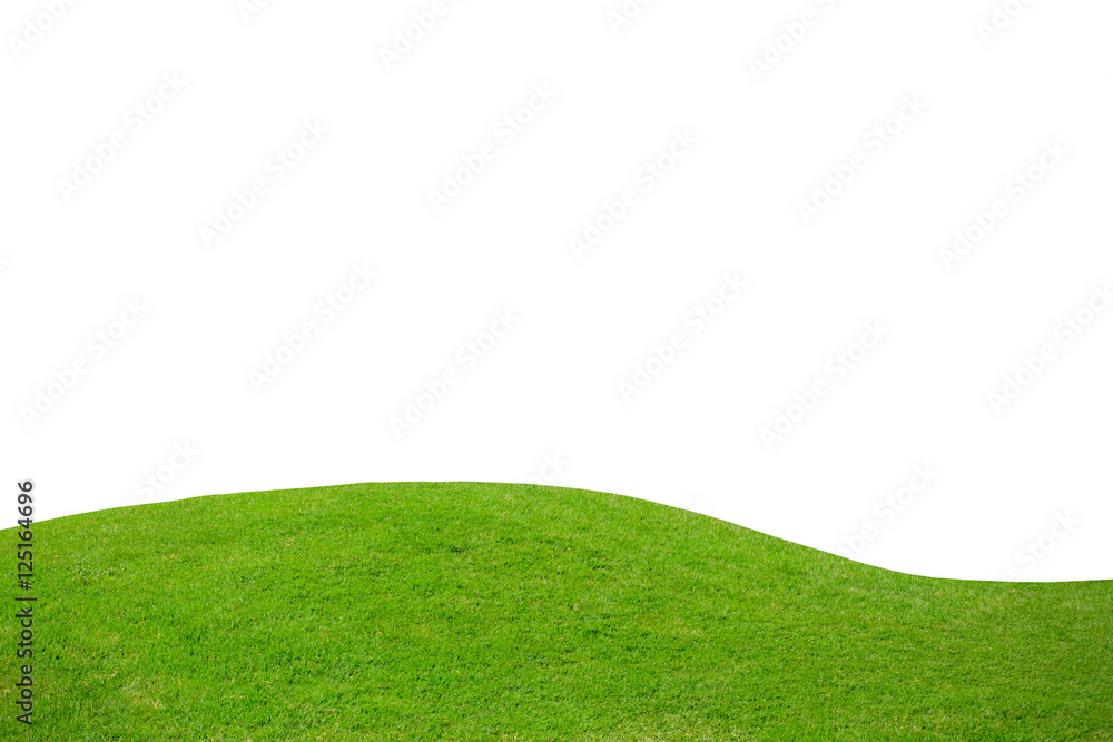 Fototapety, obrazy: Green grass on hill isolated over white background