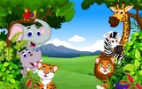 Fototapeta Child room - funny animal cartoon with forest background