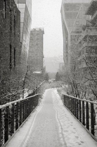 The Highline during a snowfall Poster