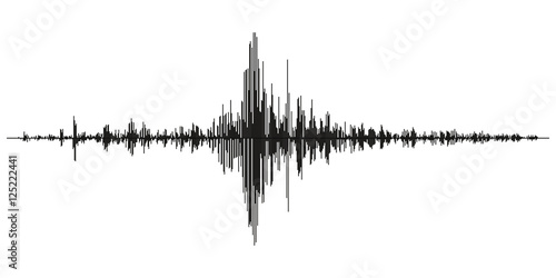 Fotografia, Obraz Seismogram of different seismic activity record vector illustration, earthquake wave on paper fixing, stereo audio wave diagram background