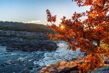 Fall Morning At Potomac River