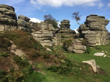 Brimham Rocks Yorkshire