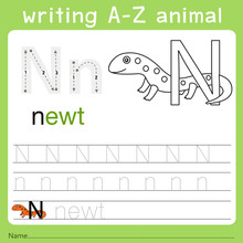Illustrator Of Writing A-z Ani...
