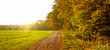 canvas print picture - Herbstweg