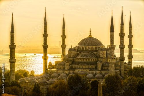 Foto op Plexiglas Turkije The Blue Mosque, (Sultanahmet Camii), Istanbul, Turkey.
