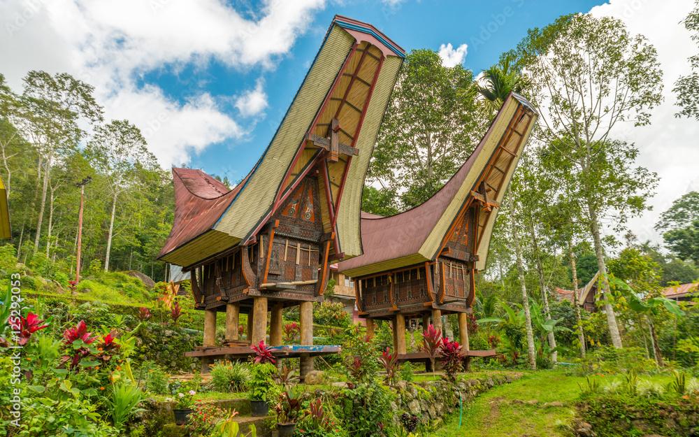 Fototapeta Traditional Toraja houses, Sulawesi, Indonesia