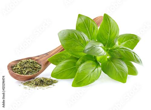 Obraz Fresh basil leaves with dry basil - fototapety do salonu