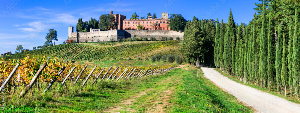 Castello di Brolio with biggest wineyards in Chianti region of Tuscany