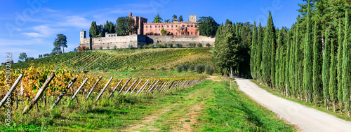 Deurstickers Toscane Castello di Brolio with biggest wineyards in Chianti region of Tuscany