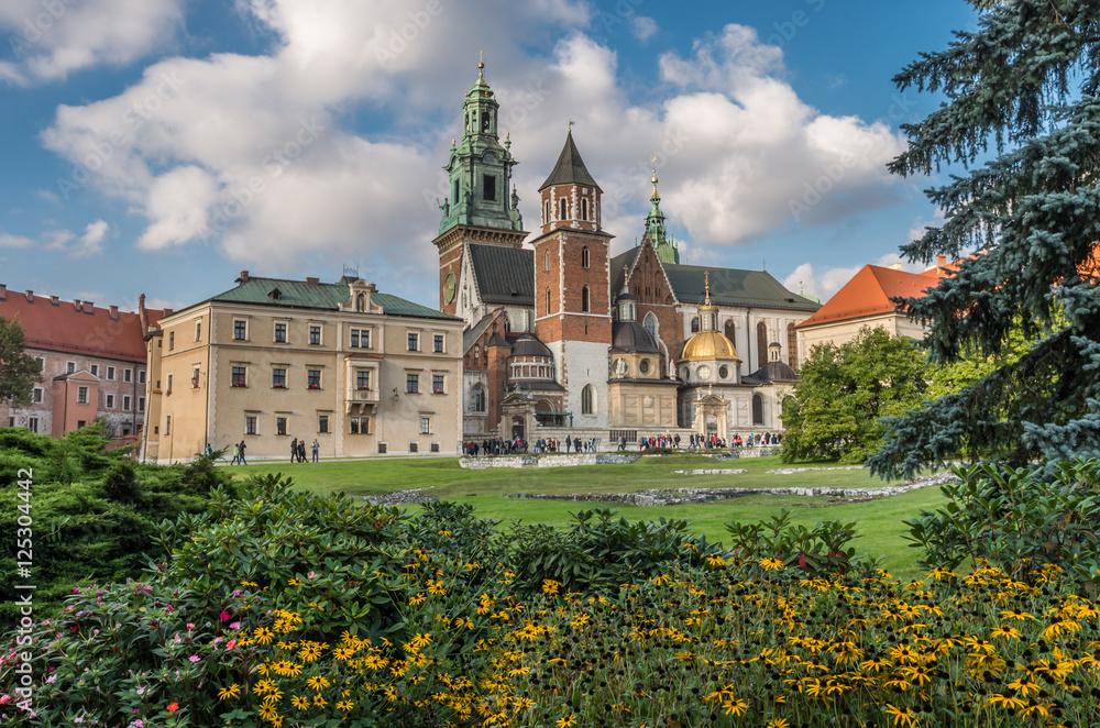 Fototapety, obrazy: Wawel i katedra na Wawelu w słoneczne popołudnie