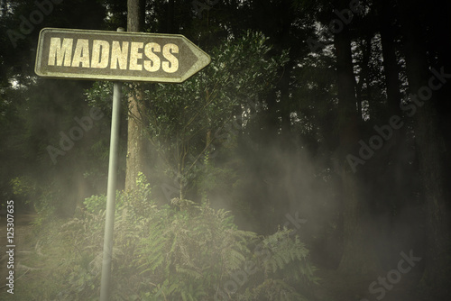 old signboard with text madness near the sinister forest Canvas Print