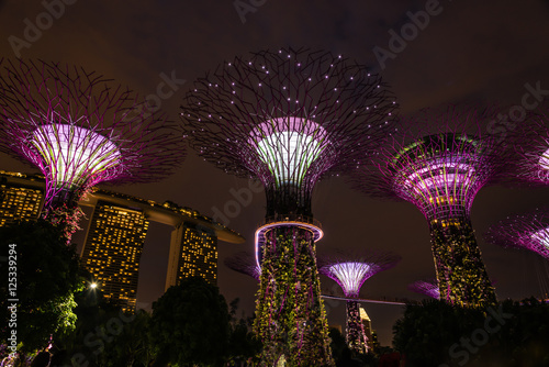 Photo  Garden Rhapsody Light Show - Gardens by the Bay, Singapore