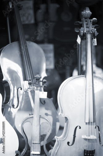 Poster Muziekwinkel Double bass in music store
