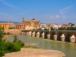 View on the Roman bridge in Cordoba