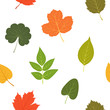 Autumn leaves. Colorful seamless pattern. Vector illustration.