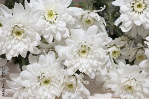 group of white flower on wooden desk,white flower have green leaf,green leaf make oxygen,copy space #125420612