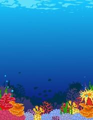 Fototapeta na wymiar beauty corals with underwater view background