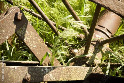 Old Farm Wheel in Tall Grass