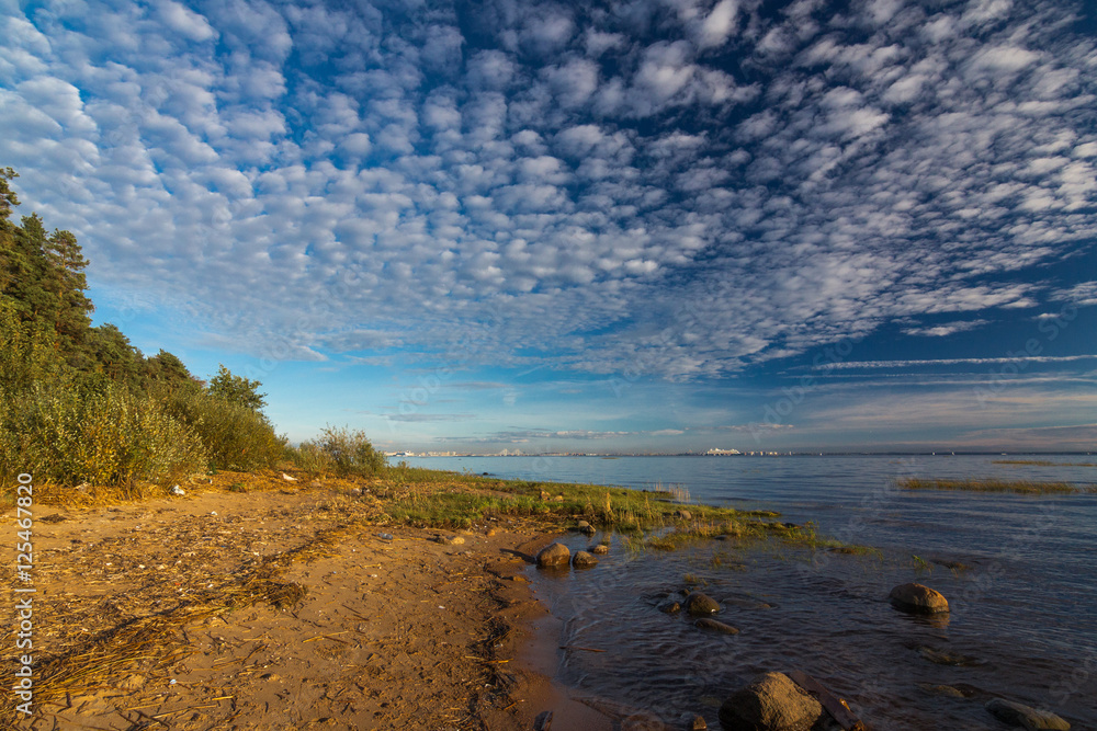 56572b7b1 Fotografie, Obraz clouds over the Gulf of Finland/ view of the coast of the  Gulf of Finland, Lenin | Posters.cz