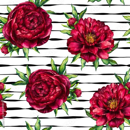 bezszwowa-deseniowa-akwarela-kwiatu-peoni-marsala-na-czarnym-pasiastym-tle-akwareli-kwiecisty-i-stripy-bezszwowy-tlo-czerwona-peonia-dla-kobieta-dnia-slub-karta-wakacje-tkanina-zaproszenie