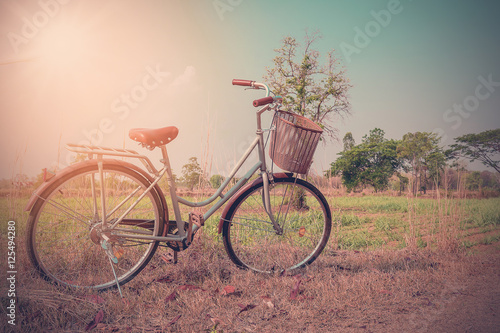 Türaufkleber Fahrrad Beautiful vintage bicycle in the field with colorful sunlight and blue sky ; vintage filter style for greeting card and post card.