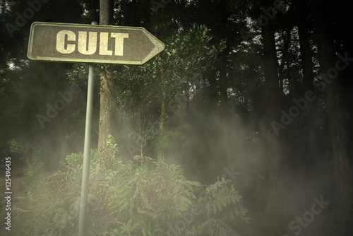 old signboard with text cult near the sinister forest Canvas Print