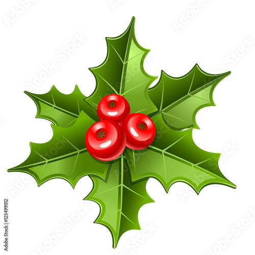 Photo  christmas mistletoe icon